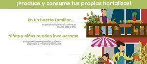 Fragmento del infográfico Produce y consume tus propias hortalizas