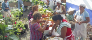 Personas comprando en un tianguis local en México