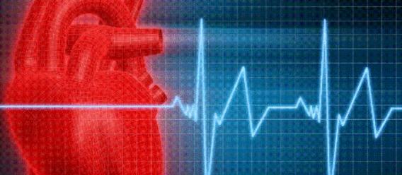 Ilustración de un corazón con una gráfica de un electrocardiograma