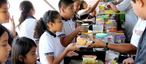 """""""Letra muerta"""" la regulación de alimentos y bebidas en escuelas por incumplimiento de SEP y SSa"""