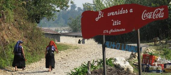 Yitic Altos de Chiapas cocacolizada