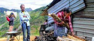 Murieron por desnutrición 87 mil mexicanos en la última década: Gloria Bautista Cuevas