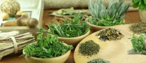 Hierbas aromáticas a tu comida: más que un adorno