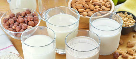Vasos de leche alternas a la de vaca