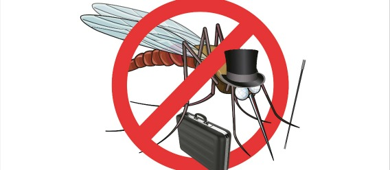 mosquito anti 5