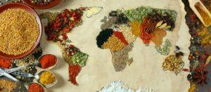 """En el marco del Día Mundial de la Alimentación ONG´s presentamos el <em>Observatorio Mundial del Derecho a la Alimentación y Nutrición</em> """"La nutrición de los pueblos no es un negocio"""""""