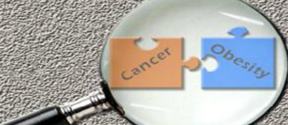 Obesidad propiciará miles de casos extra de cáncer para 2035