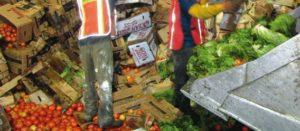 Senador pide sancionar a empresas por tirar alimentos