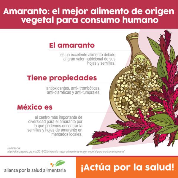 Infografía de Amaranto: el mejor alimento de origen vegetal para consumo humano