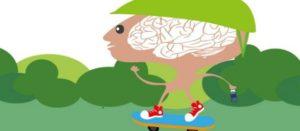 La obesidad en la adolescencia puede afectar funciones cerebrales