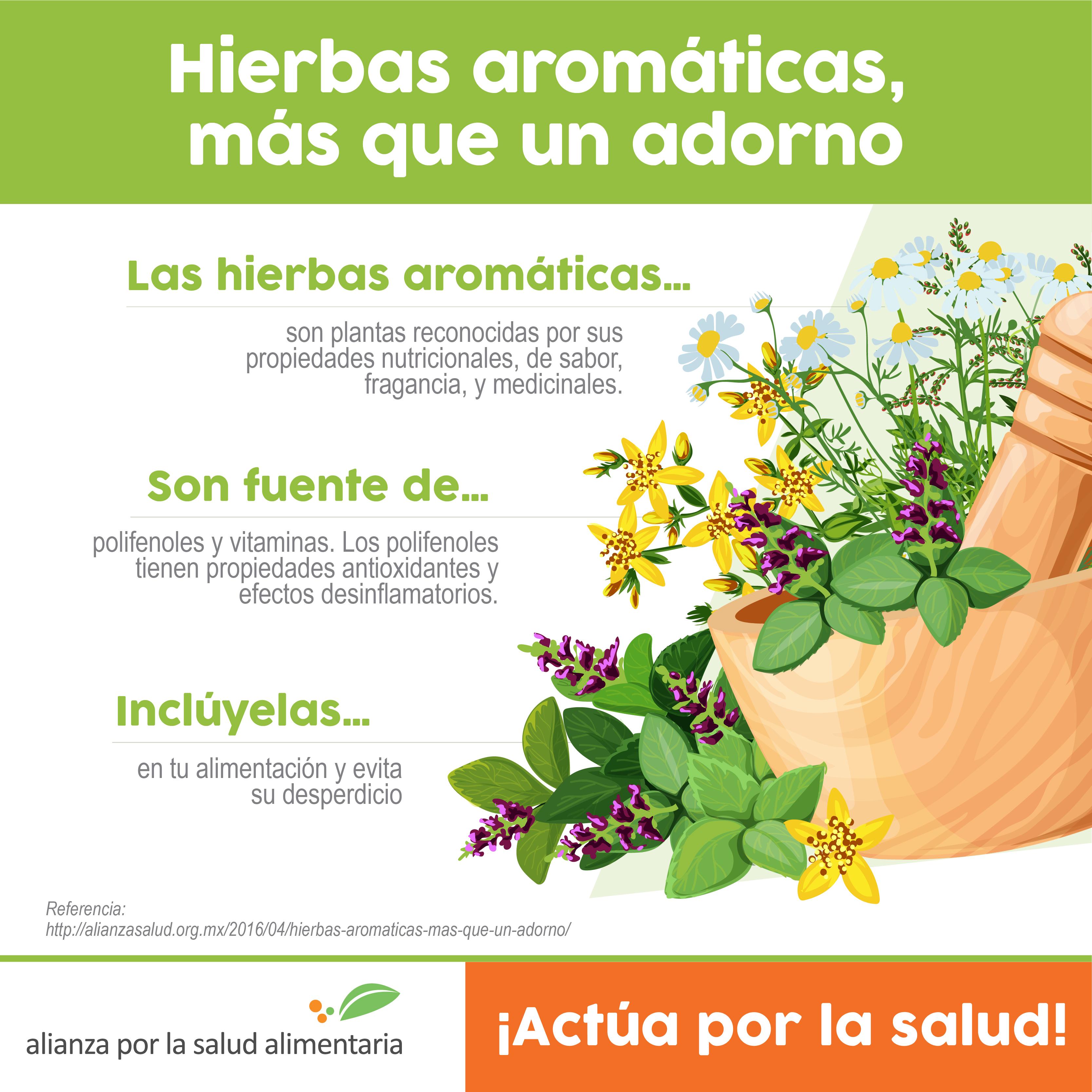 Hierbas arom ticas a tu comida m s que un adorno for Hierbas aromaticas y medicinales