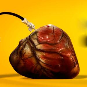 Bebidas azucaradas y enfermedades cardiovasculares