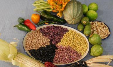 de-la-dieta-de-la-milpa - Alianza por la Salud Alimentaria