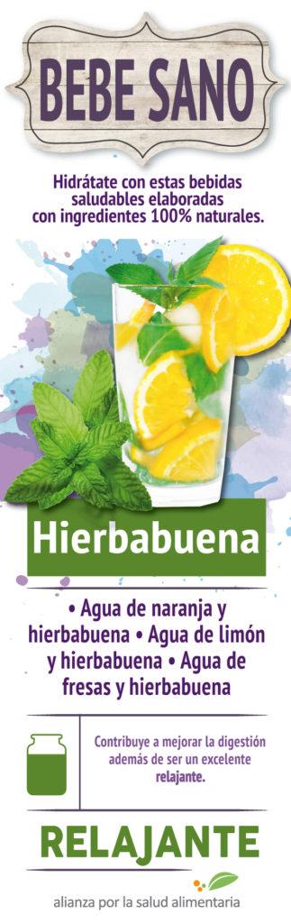 banner-bebidas-saludables-2017-04-1