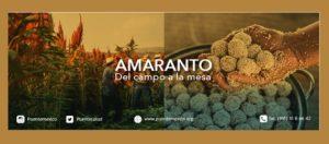"""""""Del campo a la mesa"""": el amaranto por la soberanía alimentaria"""