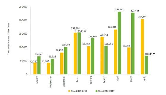 azucar-mexico-chamaqueao-exportacoines-totales-de-los-meses-2-ciclos