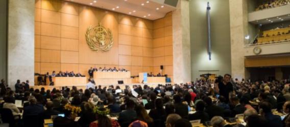 Imagen de la sesión inaugural de la Asamblea Mundial de la Salud de la OMS en Ginebra, Suiza