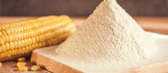Elote y harina de maíz sobre una mesa