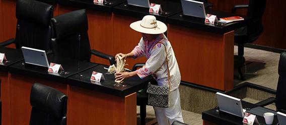 Senadora Jesusa Ramírez coloca un elote es su curul, durante la sesión en el Senado donde fue aprobada la ley que protege al maíz nativo