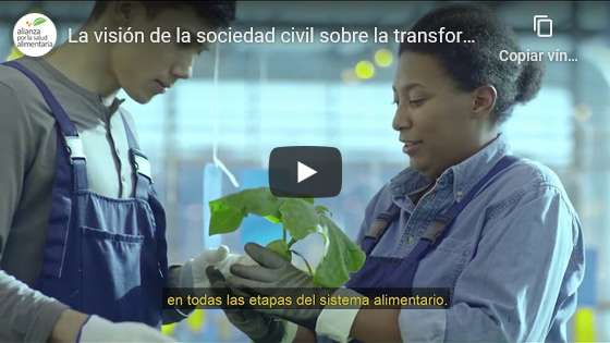 Portada del video La visión de la sociedad civil sobre la transformación de los sistemas alimentarios