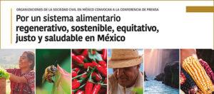 Nos sumamos al llamado al gobierno mexicano a ser voz de la humanidad y de la esperanza en la Pre-Cumbre de Sistemas Alimentarios ante la captura de las corporaciones