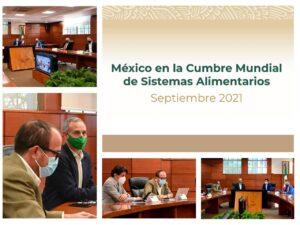 Imágenes de la conferencia de prensa sobre México en la Cumbre Mundial de Sistemas Alimentarios